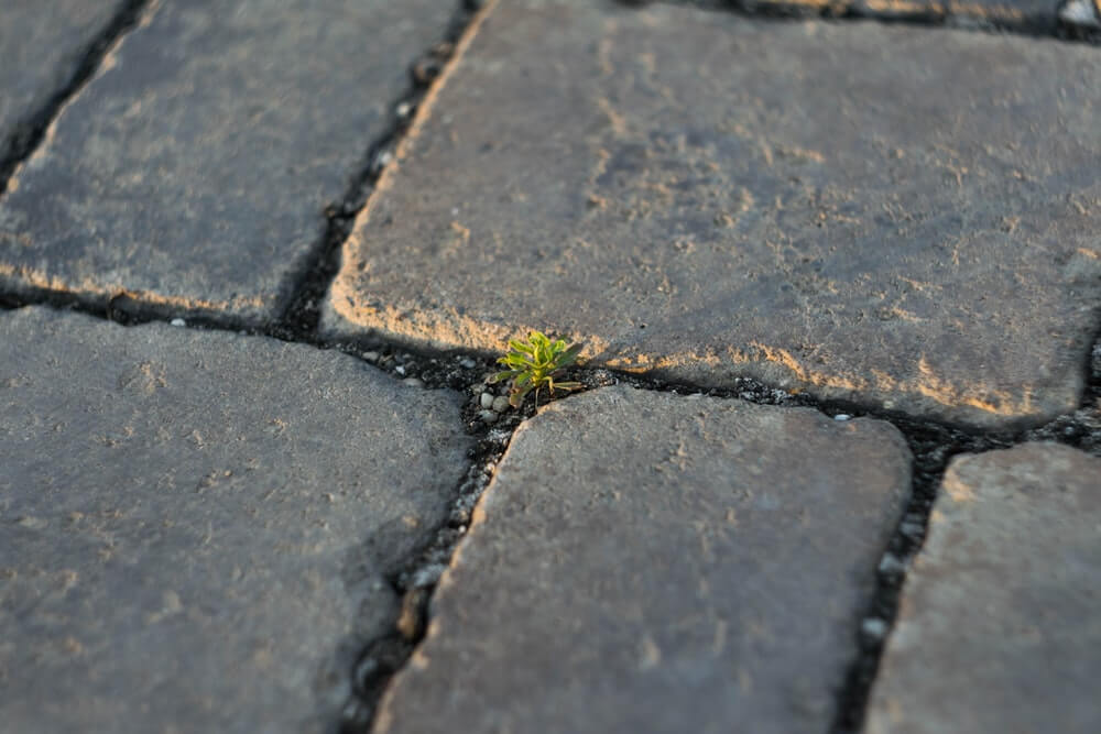 10 compelling reasons to invest in paving