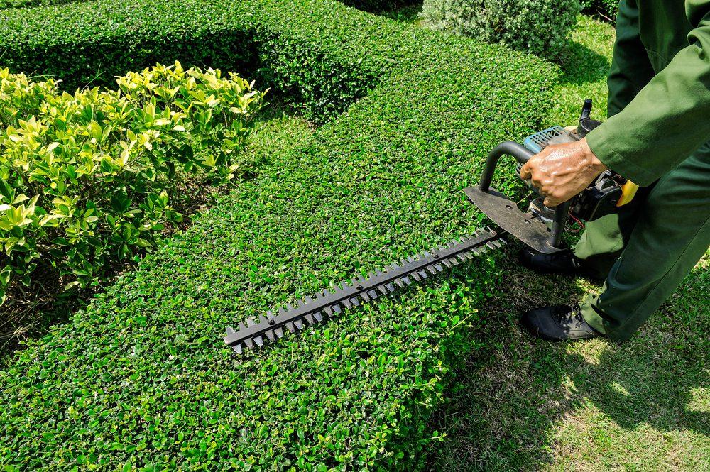 Expert Landscaping Contractors