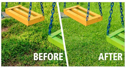 Before and After Turfing Services